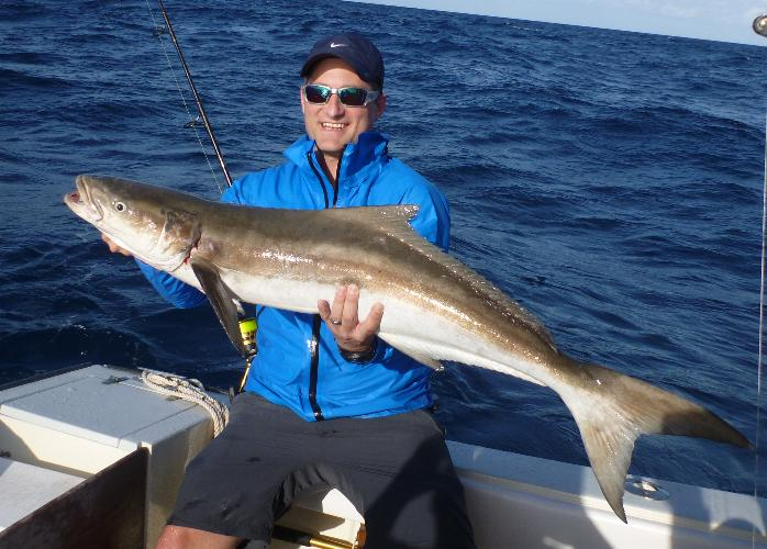 Offshore Cobia Kingfish Barracuda Cero Mackerel Jacks