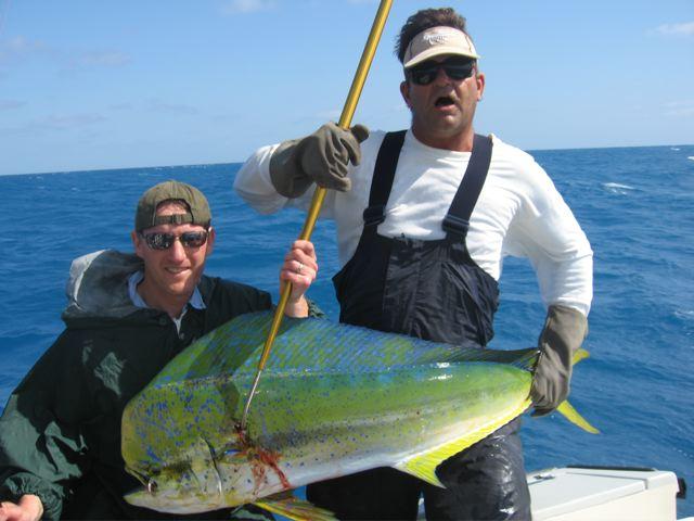 Offshore dolphin mahi mahi sport fishing islamorada for Dolphin fishing florida