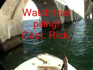 Panic in the Pilings - Click to watch!